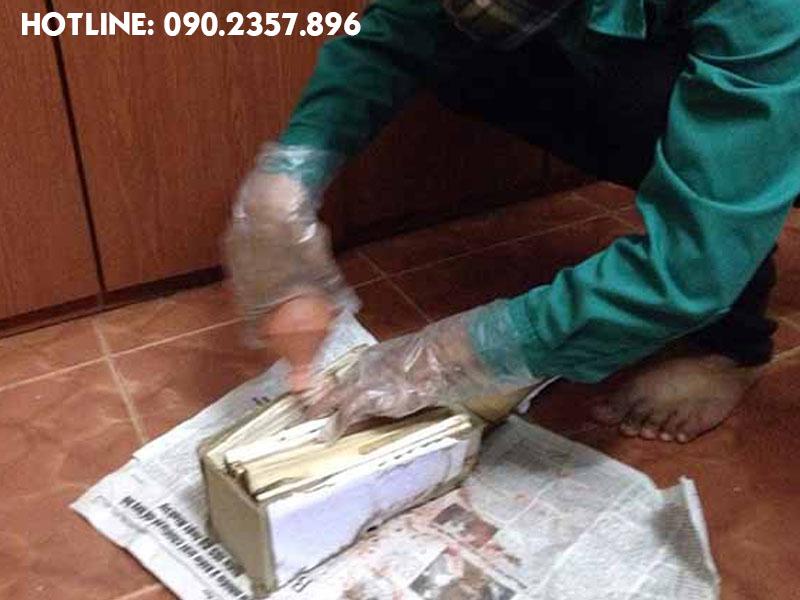 Hướng dẫn cách phun thuốc bột PMC 90 diệt mối tại nhà