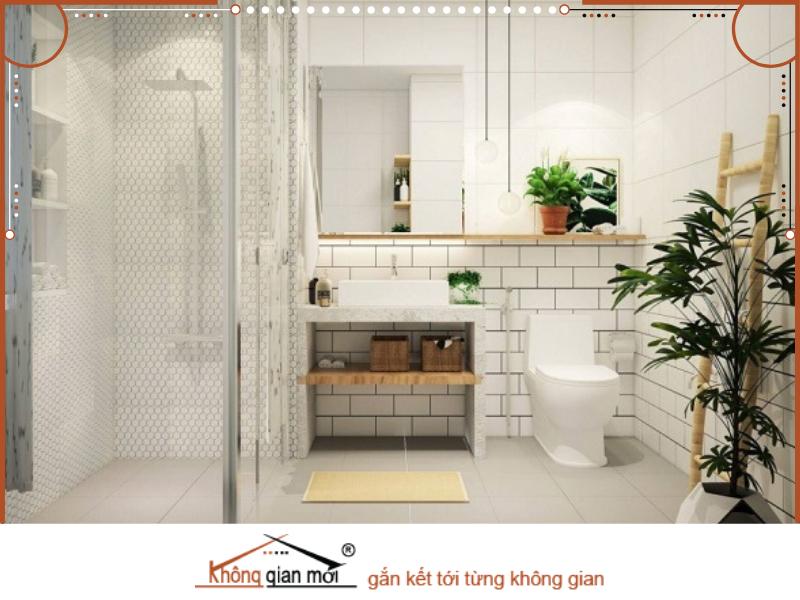 Nhà vệ sinh cần được sửa chữa kiểm tra thường xuyên để tránh xảy ra tình trạng hư hỏng ẩm mốc không đảm bảo vệ sinh